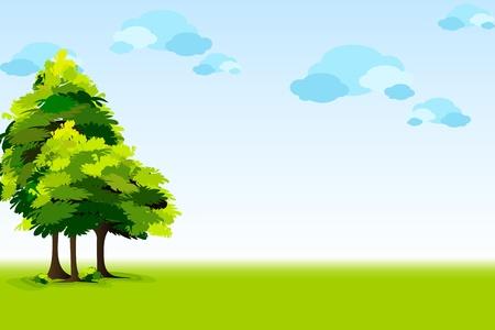 hoog gras: illustratie van het schitterende landschap met bomen en hemel Stock Illustratie