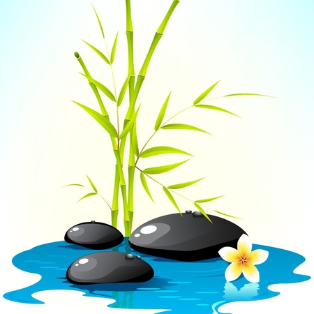 spa treatment: illustration of spa stone with bamboo leaves and flower