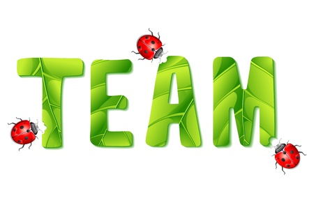 ladyfly: illustration of lady bugs eating team made of leaf Illustration