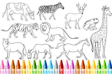 color book: illustration of sketch of animal with colorful crayon for color book