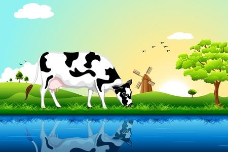 vaca: Ilustración de pastoreo de vacas en campo con el árbol y el molino de viento en segundo plano