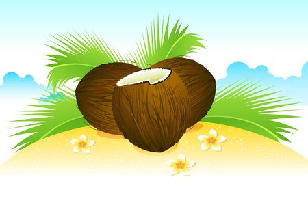 illustration of coconut with palm leaf on beach Stock Vector - 9883827