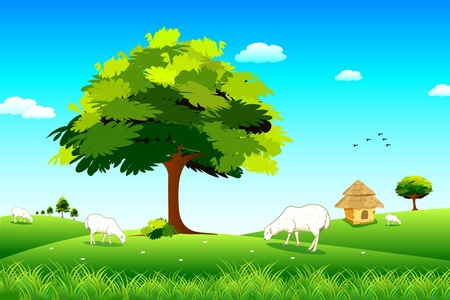 pastoral scenery: illustration of sheep grazing in grassland in sunny day