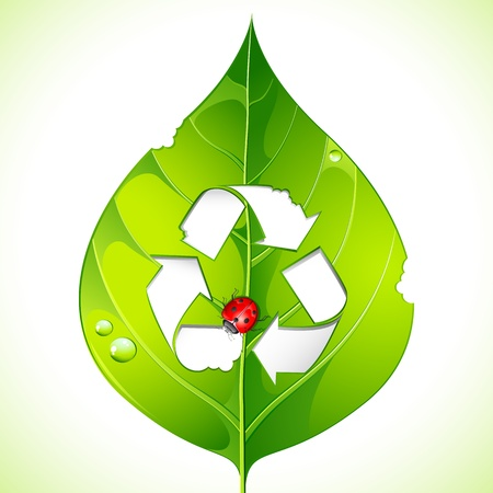 illustration of bug biting leaf forming recycle symbol Stock Vector - 10257977