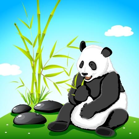 �  giant panda: Ilustraci�n de panda comiendo bamb� en selva