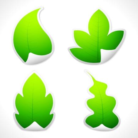 illustration of set of sticker in different leaf shape Vector