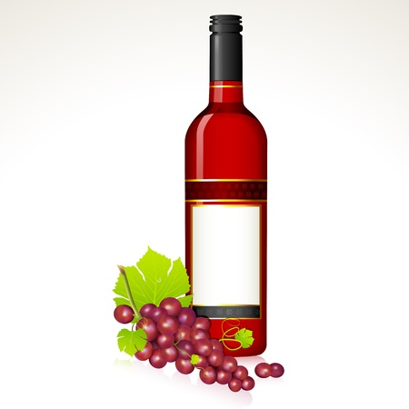 bottle of wine: illustration of red grape with bottle of red wine