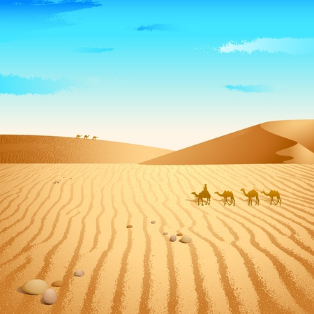 land mammals: illustration of group of camel walking in desert