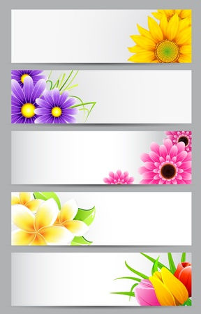 illustration of set of banner with different flower Stock Illustration - 11949685