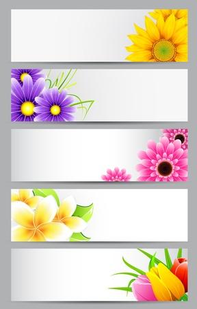 illustration of set of banner with different flower Stock Illustration - 11949685