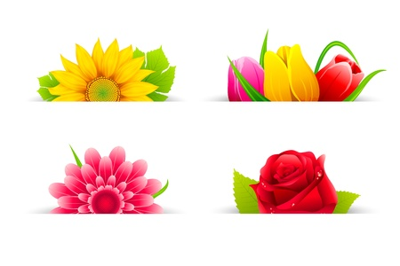 illustration of set of colorful flower in banner Stock Illustration - 11949681