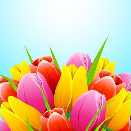 pastel colour: illustration of bunch of colorful tulip flower on abstract background Illustration