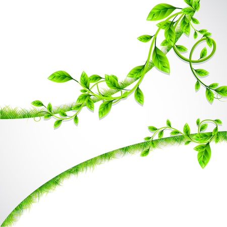 illustration of plant with eco poster on white background Vector