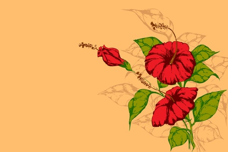 lllustration: lllustration of retro flower on plain background