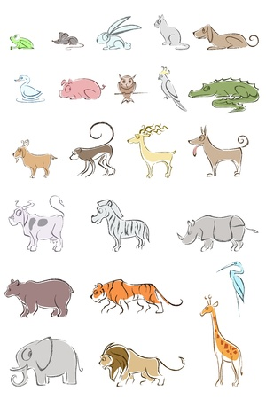 illustration of set of different animal on isolated background Vector