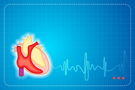 illustration of lifeline coming out of heart on graph background Vector