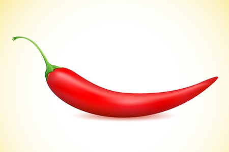 illustration of red chilli placed on white background Vector