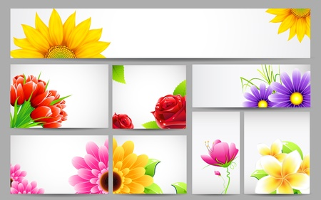 aster: illustration of flower banner in different size