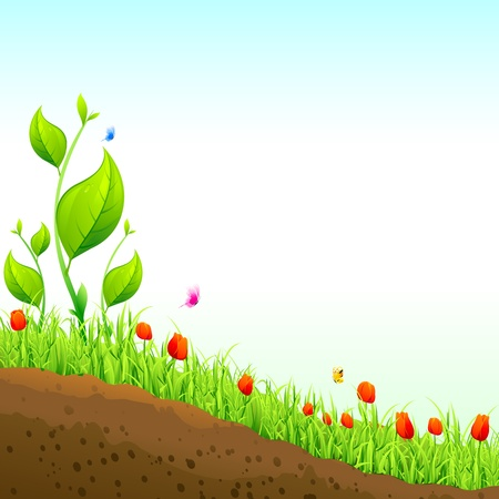 illustration of nature garden with flower plant Stock Vector - 14533710