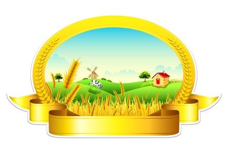 cultivating: ejemplo de paisaje de la granja de trigo de oro que muestra la revoluci�n verde