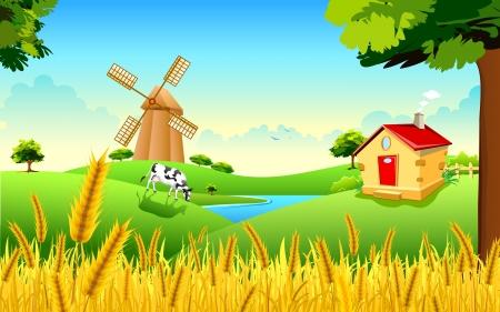 cow farm: illustrazione del paesaggio della fattoria di grano dorato che mostra rivoluzione verde