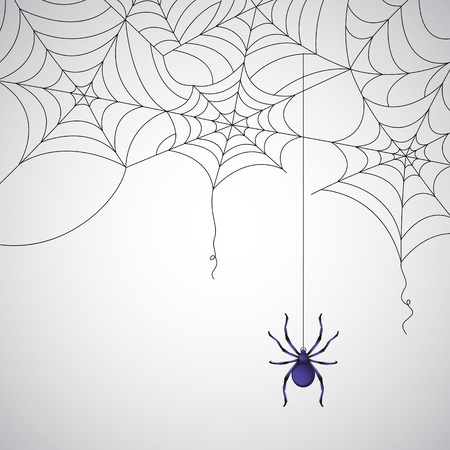 web2: illustration of spider web pattern on abstract background