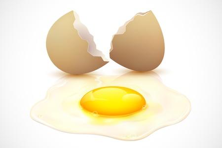 broken eggs: illustration of broken egg on the floor with yolk Illustration