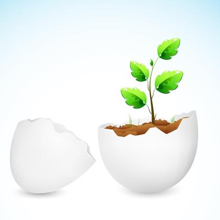 uovo rotto: illustrazione di alberello pianta che cresce in guscio d'uovo rotto
