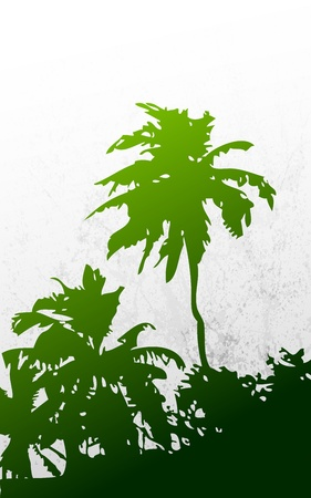 subtropical: illustration of palm tree in grungy background