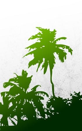 carribean: Ilustraci�n de palmera en el fondo sucio