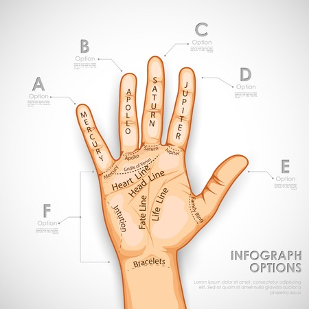 the reader: illustration of palmistry infographics describing different lines
