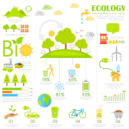 solar home: illustration of Ecology Infographics chart in flat style