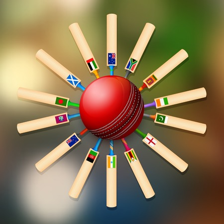 participacion: ilustraci�n de bate de cricket de los diferentes pa�ses participantes