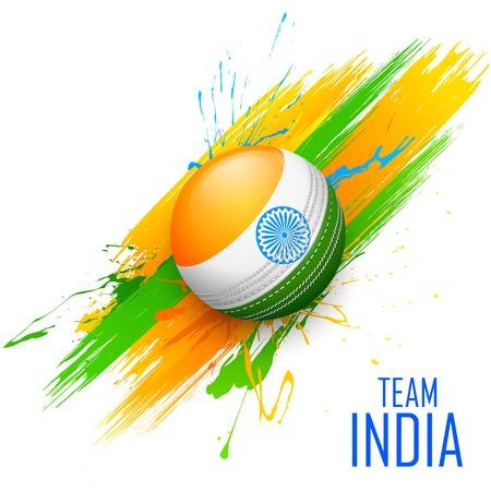 지저분한 인도 배경에서 크리켓 공의 그림