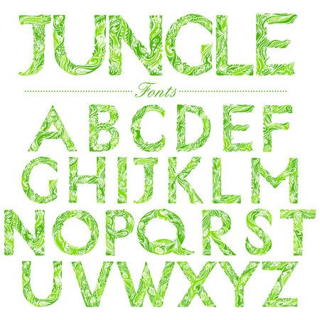 jungla: Ilustración del conjunto de la fuente Inglés en remolino selva