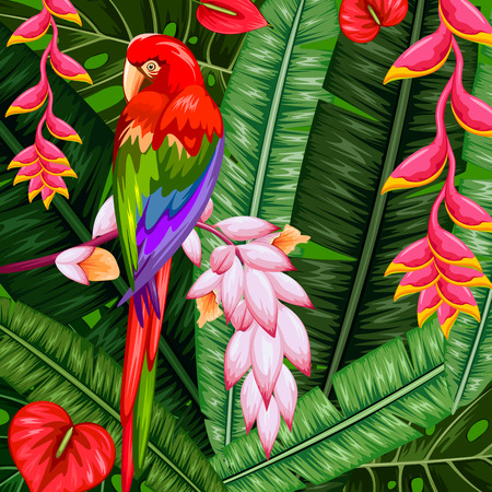 illustration of exotic tropical background with colorful macaw
