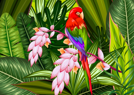 heliconia: illustration of exotic tropical background with colorful macaw