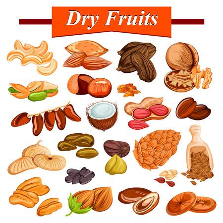 cashewnut, 아몬드, 건포도, 무화과와 견과를 포함하여 모듬 된 마른 과일 세트