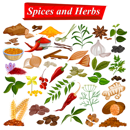 aromatic: Full collection of aromatic Spices and Herbs used for cooking
