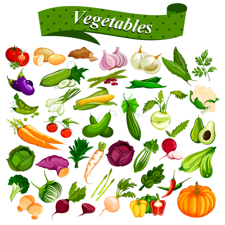 Full collection of different types of fresh and healthy vegetables