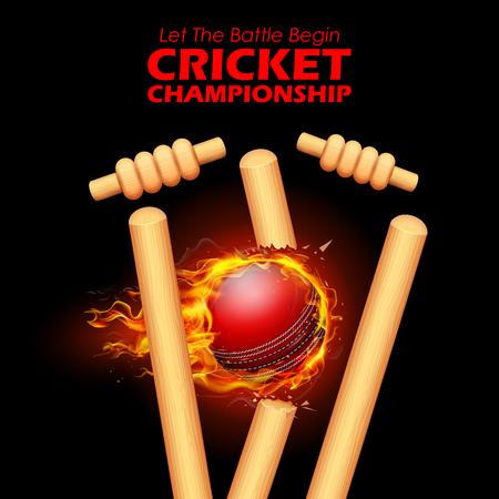Fiery ball breaking the stumps for Cricket. 版權商用圖片 - 76835143