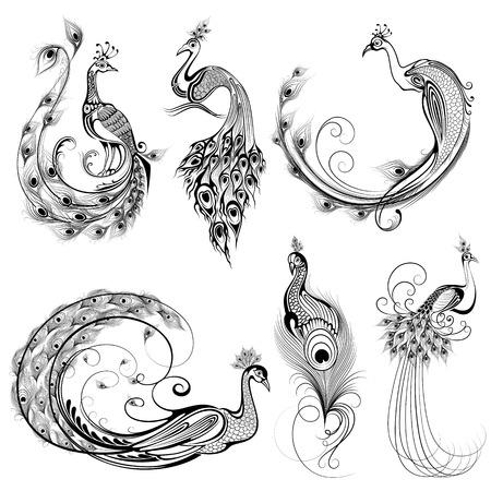 Tattoo art design of peacock collection Illustration