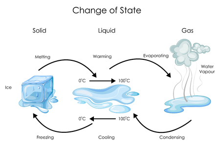 Education Chart of Biology for Change of State for Water Diagram