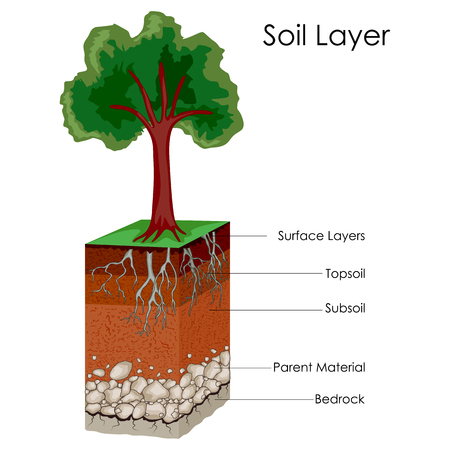 Education Chart of Science for Layers of Soil Diagram