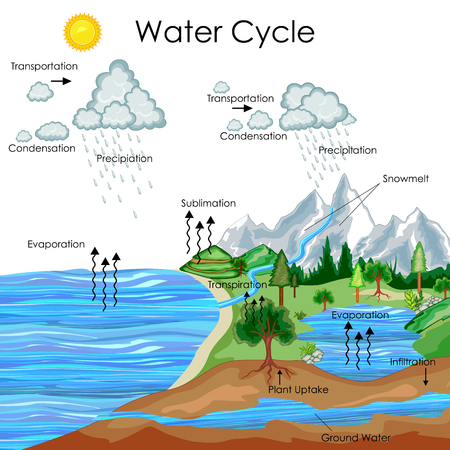 education chart of water cycle diagram royalty free cliparts rh 123rf com water cycle diagram blank water cycle diagram rubric