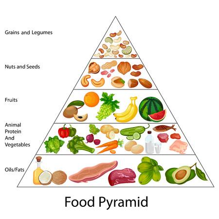 Bildung Diagramm der Nahrung Pyramide Diagramm Standard-Bild - 80714977