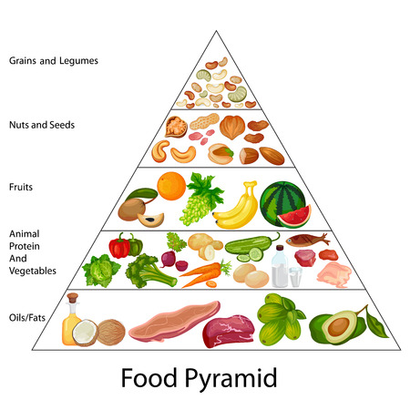 Education Chart of Food Pyramid Diagram Фото со стока - 80714977