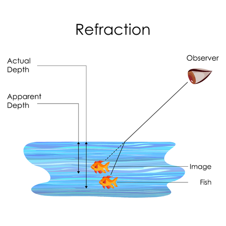 Education Chart Of Physics For Refraction Concept In Water Medium