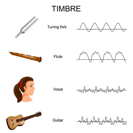 Gráfico educativo de diferentes diagramas de timbre sonoro Foto de archivo - 98918799
