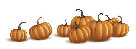 Orange pumpkin isolated on white and on black. Realistic vector pumpkins. Vektorové ilustrace
